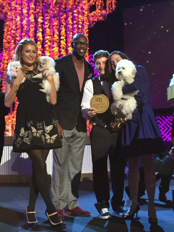 The Dog of the Year, Hank the Ballpark Pup, poses with Paris Hilton, Terrell Owens and his adoptive family.